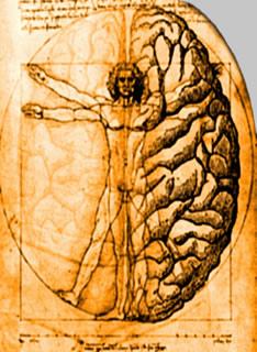 Mente: A melhor Amiga e Inimiga do Corpo